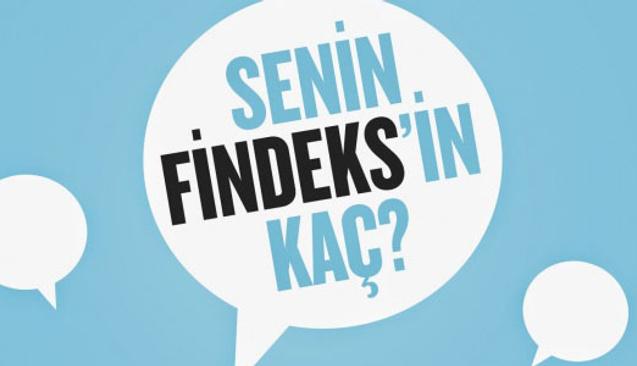 Nasıl Findeks Raporu Alınır ve Findeks Raporu Ne İşe Yarar?