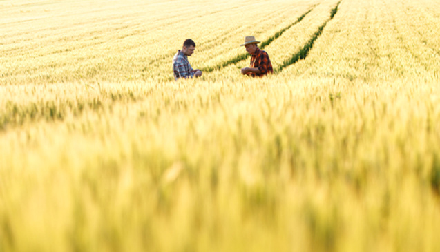 Çiftçiler İçin Finansal Okuryazarlık Neden Önemli?