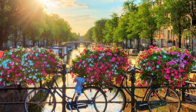 Amsterdam ve Brüksel'e Gidenler Neler Yapabilir?