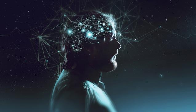 Beynimizde Üç Canlı Var: Timsah, Maymun ve Mantık