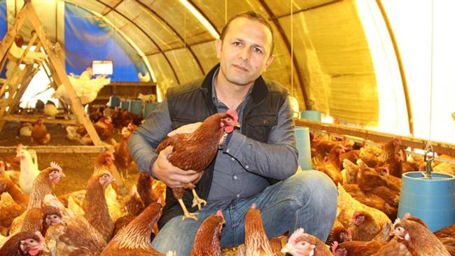 Ödünç aldığı tavuklarla zengin oldu