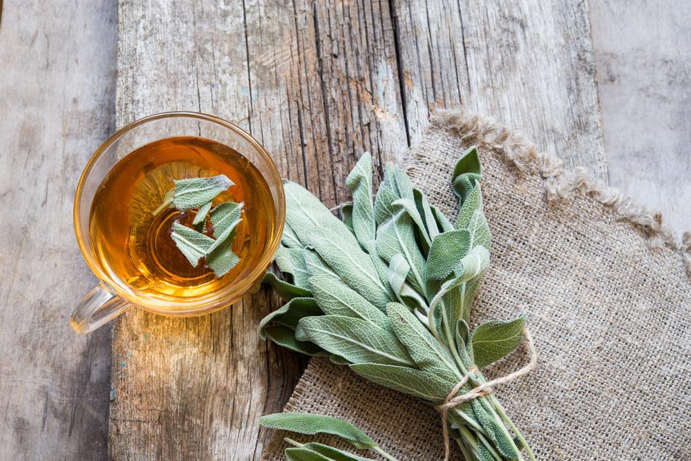 Hangi Bitki Çayları Bağışıklık Sisteminizi Koruyor? - Sayfa: 1
