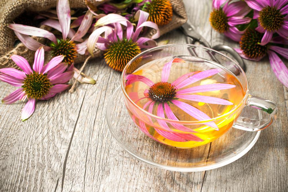 Hangi Bitki Çayları Bağışıklık Sisteminizi Koruyor? - Sayfa: 3